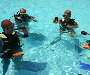 Adrenalin Activities Australia