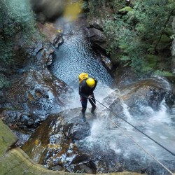Adrenalin Activities Wentworth Falls