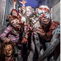 Zombie Survival United Kingdom