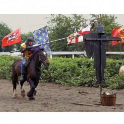 Medieval Jousting United Kingdom
