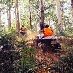 Adrenalin Activities Gisborne