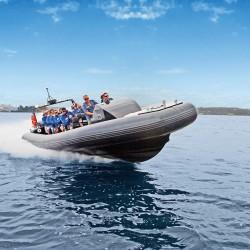 Adrenalin Activities Sydney