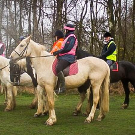Horse Riding Haywards Heath, West Sussex